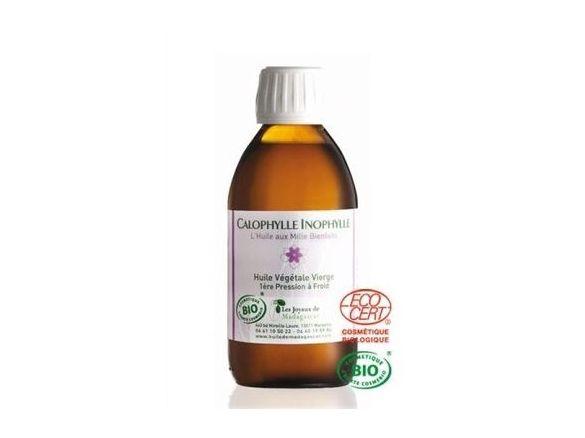huile-calophylle-inophylle-bio-joyaux-madagascar.jpg
