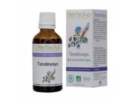 tendinolys.jpg